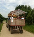 Subway to Nature – Domäne Dahlem: an open-to-the-public organic farm in the capital